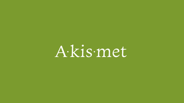 Stop Wordpress Comment Spam For Good With Akismet!